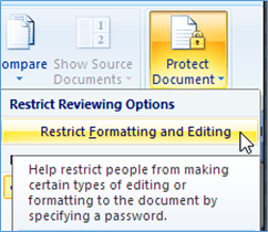 Word Document Protection for 2007 task pane